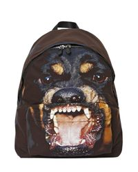Givenchy Brown Rottweiler Print Backpack