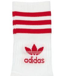 Adidas Originals ソックス 3足セット White