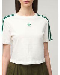 Adidas Originals クロップドコットンtシャツ White