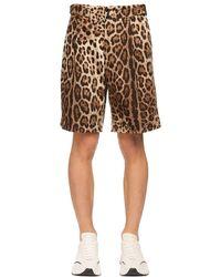 Шорты Из Хлопка С Принтом Dolce & Gabbana для него, цвет: Brown