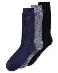 Timberland Blue 3-pk. Socks for men