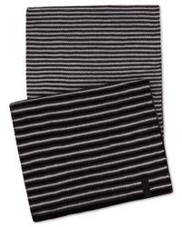 Calvin Klein | Black Men's Ombre Stripe Muffler for Men | Lyst