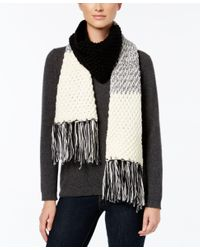 Rampage | Black Colorblock Fringe Scarf, Only At Macy's | Lyst