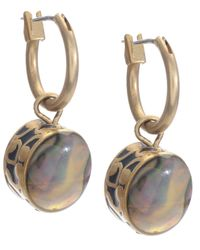 Kenneth Cole Metallic Earrings, Gold-tone Abalone Drop