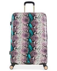 "Aimee Kestenberg Multicolor Aruba 28"" Hardside Expandable Spinner Suitcase"