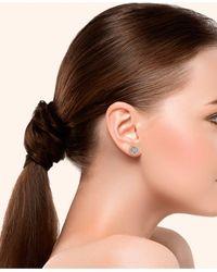 Macy's Metallic Diamond 1/3 Ct. T.w. Family Tree Stud Earrings In Sterling Silver