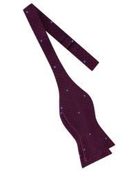 Tommy Hilfiger - Purple Men's Small Gingham Star To-tie Silk Bow Tie for Men - Lyst