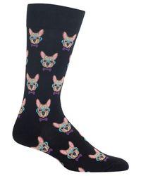 Hot Sox - Black Men's Smart Frenchie Socks for Men - Lyst