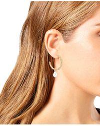 Robert Lee Morris Multicolor Pearl Link Hoop Earrings