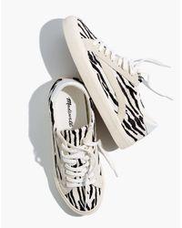 Madewell Multicolor Sidewalk Low-top Sneakers In Zebra Calf Hair