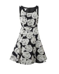 Oscar de la Renta | Black Floral Applique Belted Dress | Lyst
