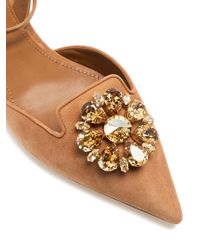 Dolce & Gabbana - Brown Belluci Point-toe Suede Flats - Lyst