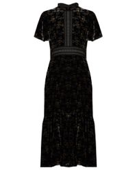 Rebecca Taylor - Black Floral-print Velvet Dress - Lyst