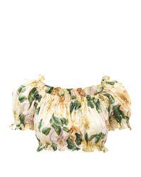 Dolce & Gabbana カメリアプリント コットンクロップドトップ Multicolor