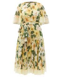 Dolce & Gabbana カメリアプリント シルクジョーゼットドレス Multicolor