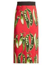 Dolce & Gabbana Red Broad Bean-print Midi Skirt