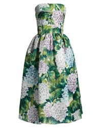 Dolce & Gabbana | Green Hydrangea-print Organza Strapless Dress | Lyst