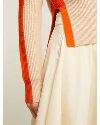 Sportmax Multicolor Boris Sweater
