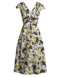 Erdem Multicolor Fabianna Woven-cotton Dress
