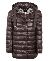 Herno Brown Polyester Down Jacket