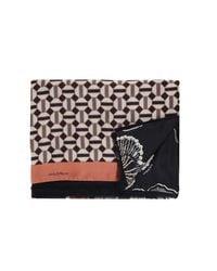 Maliparmi Black Multicolor Silk Foulard