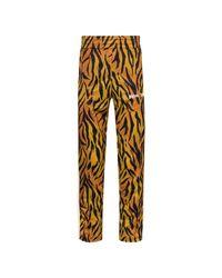Palm Angels Tiger Track Pants in het Brown voor heren
