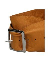 Belt Orciani en coloris Brown