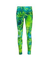 Versace Trousers in het Green