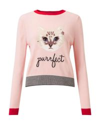 Miss Selfridge - Pink Cat Knitted Jumper - Lyst
