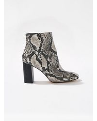 Miss Selfridge - Gray Autumn Snakeskin Boots - Lyst