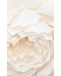 Racil - White Country Flower - Lyst