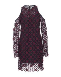 Self-Portrait - Multicolor Cutout Lace Mini Dress - Lyst