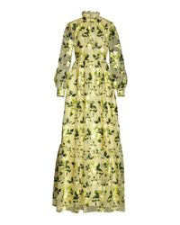 Erdem Multicolor Clementine Floral-embroidered Silk Organza Gown