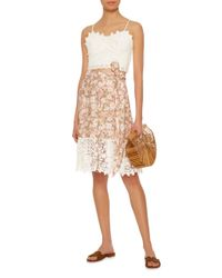Miguelina White Frances Scalloped Cotton-lace Cropped Top