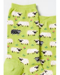 Socksmith | Green It's All Sheep To Me Socks | Lyst