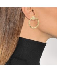 Joanna Laura Constantine - Metallic Nut Hoop Earrings - Lyst