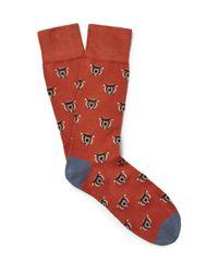 Corgi Red Bear-patterned Cotton-blend Socks for men