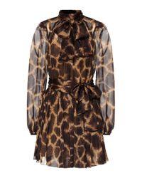 Dolce & Gabbana Brown Bedrucktes Kleid aus Seide