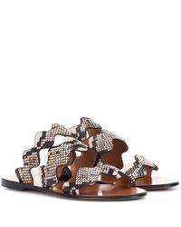 Chloé Brown Lauren Leather Sandals