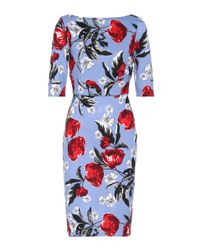 Erdem Blue Kirsten Floral-printed Dress