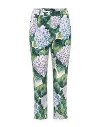 Dolce & Gabbana Green Hydrangea Print Tapered Trousers