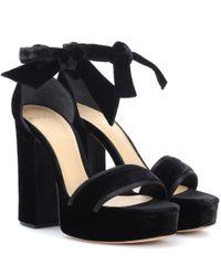Alexandre Birman Black Celine Velvet Plateau Sandals