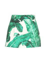 Dolce & Gabbana Green Cotton-blend Jacquard Shorts