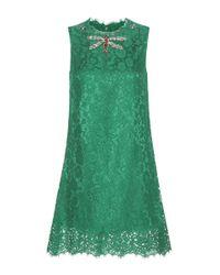 Dolce & Gabbana Green Embellished Cotton-blend Lace Mini Dress