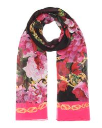 Dolce & Gabbana Pink Printed Silk Scarf