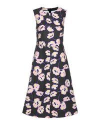 Marni Blue Floral-printed Cotton Dress