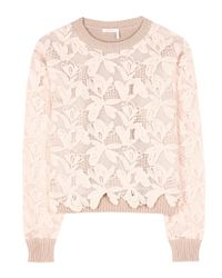 See By Chloé Pink Cotton Lace Sweater
