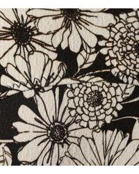 Bikini Poppy a stampa floreale di Lisa Marie Fernandez in Black