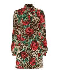 Dolce & Gabbana Brown Minikleid mit Leopardenmuster