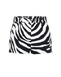 Dolce & Gabbana Black Shorts mit Zebra-Print